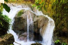 光滑的岩石的流动的瀑布与绿色叶子 免版税图库摄影