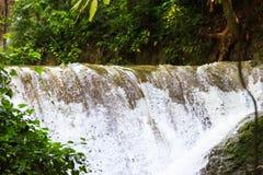 光滑的岩石的流动的瀑布与绿色叶子 库存图片