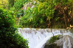 光滑的岩石的流动的瀑布与绿色叶子 库存照片
