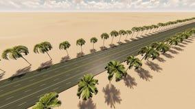 光滑的照相机运动通过在沙漠的鲜亮的棕榈胡同 库存例证
