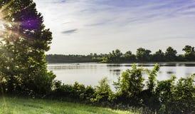 光爆炸通过在小河岸的树 免版税库存照片