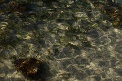 光的样式在海草和沙子的在海底 免版税库存照片