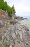 光秃的岩石和杉木在湖岸遥控 图库摄影