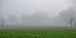 光秃的树和自行车骑士在11月有雾的早晨 库存照片