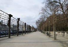 光秃的树在布鲁塞尔 免版税库存图片