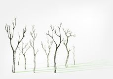 光秃的树时髦的传染媒介背景集合阴影 向量例证