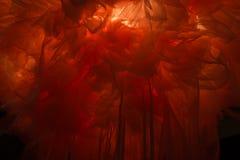 光通过衣裳抽象背景发光 库存照片
