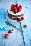 光,泡沫的自创饮食草莓蛋糕 免版税库存照片