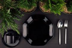黑光滑的板材,匙子,叉子,毗邻绿色植物作为典雅的minimalistic菜单的,顶视图eco友好的大模型 免版税库存照片