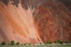 光滑的橙色流纹岩山 红色岩石山风景 在山的脚的绿色树 免版税库存照片