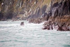 克利尔岛海岸  图库摄影