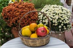 克利特,希腊- 2017年11月:柳条筐用在菊花背景的果子  免版税图库摄影
