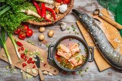 派克和新鲜蔬菜鱼汤的 免版税库存照片