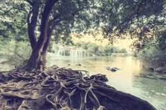 克尔卡国家公园,美好的自然风景,瀑布Skradinski buk的看法,克罗地亚 库存图片