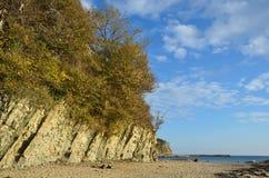 克拉斯诺达尔地区, Tuapse区, Dzhubga 黑海的岩石岸,树木繁茂 免版税库存图片