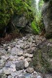 克拉科夫峡谷山tatra 库存照片