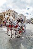 """克拉科夫,波兰†""""2015年9月12日:美丽如画的马支架 免版税图库摄影"""