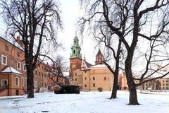 克拉科夫, Wawel城堡在波兰 城堡通过老树 免版税库存照片