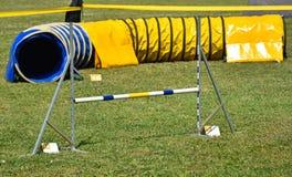 克服困难狗敏捷性比赛的门和隧道 免版税库存照片