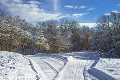 克服横穿全国滑雪线索的Criss 免版税图库摄影