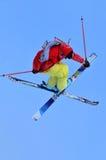 克服的滑雪 免版税库存照片