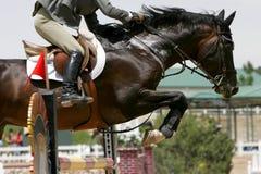 克服的骑马障碍 免版税库存图片