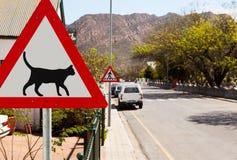 克服路标三角警告的猫 免版税库存照片