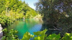 克罗地亚湖国家公园plitvice sostavtsy瀑布 股票视频