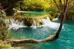 克罗地亚湖plitvice 免版税图库摄影