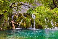 克罗地亚湖plitvice 免版税库存图片