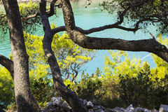 克罗地亚的视域 hvar海岛 库存图片
