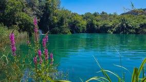 克罗地亚的风景montain 库存图片