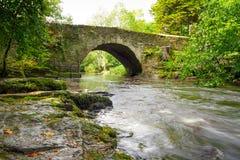 克莱尔幽谷美丽的小河  免版税库存照片