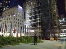 洛克菲勒中心在树照明设备前的圣诞树 图库摄影