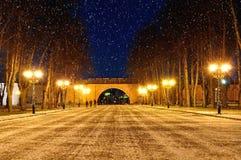克里姆林宫公园在Veliky诺夫哥罗德,俄罗斯-冬天与降雪的夜风景 免版税库存照片