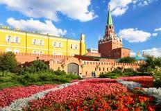 克里姆林宫在有花的莫斯科停放,俄罗斯 免版税库存照片