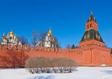 克里姆林宫在莫斯科(俄国) 库存图片