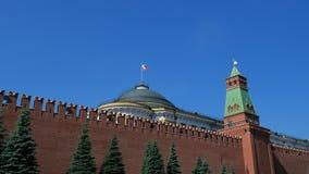 克里姆林宫墙壁和政府大厦在红场在莫斯科 俄罗斯的首都的标志,在一个晴朗的夏日 股票视频