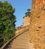 克里姆林宫楼梯 库存照片