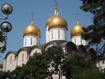 克里姆林宫的假定大教堂的圆顶 免版税图库摄影