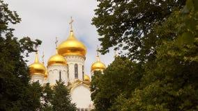 克里姆林宫的寺庙的镀金的圆顶 影视素材