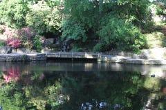 克里斯特尔里弗杜鹃花庭院 库存照片