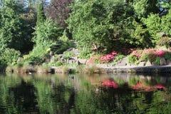克里斯特尔里弗杜鹃花庭院 免版税库存照片
