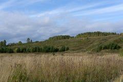 克里米亚半岛山的背景的绿色草甸 免版税库存图片