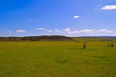 克里米亚半岛干草原 图库摄影