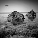 克里米亚海景 黑色白色 库存图片