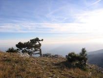 克里米亚的壮观的美丽如画的山风景从AI陪替氏山的顶端与树 免版税库存图片