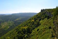 克里米亚的美妙的绿色山 免版税库存照片