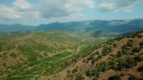 克里米亚风景:葡萄园鸟瞰图在山的低地 克里米亚半岛葡萄园 影视素材