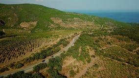 克里米亚风景:葡萄园鸟瞰图在山的低地 股票录像